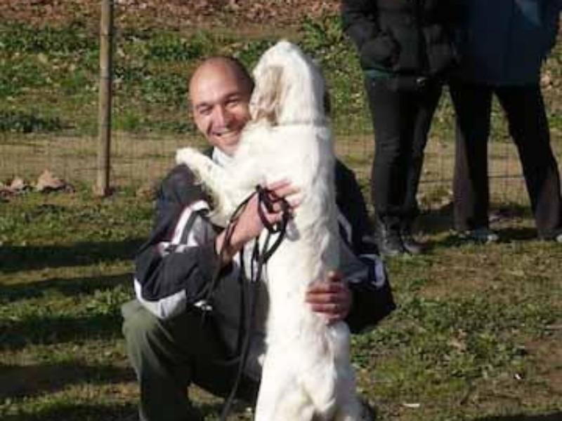 Boncan, adiestramiento, educación y modificación de conducta canina en Barcelona - Adiestramiento Setter.