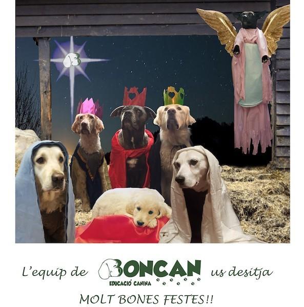 Boncan os desea Bon Nadal, Feliz Navidad y Merry Christmas