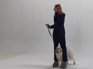 Boncan, adiestramiento, educación y modificación de conducta canina en Barcelona - Anuncio de Vogue