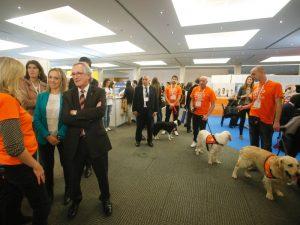 Boncan, adiestramiento, educación y modificación de conducta canina en Barcelona - Trabajo publicitario de Affinity con perros, con la presencia de Xavier Trias.