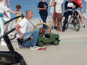Boncan, adiestramiento, educación y modificación de conducta canina en Barcelona - Grabación de un anuncio con perros.