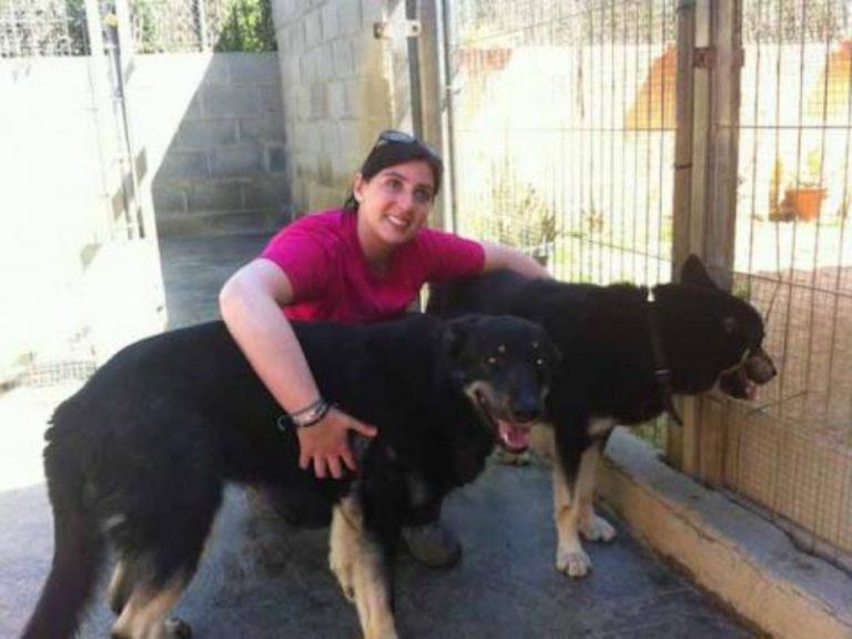 Adiestramiento Boncan perro mezcla Barcelona