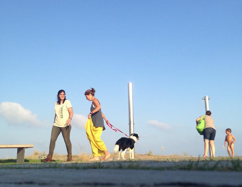 Boncan, adiestramiento, educación y modificación de conducta canina en Barcelona - Border Collie